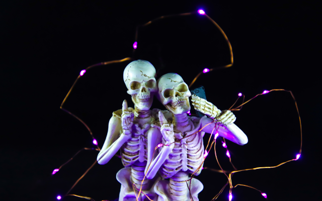 twin skeletons wrapped in lighting